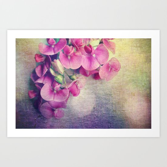 wild sweet peas Art Print