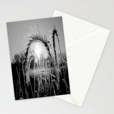 Wheat Sunrise B&W Stationery Cards