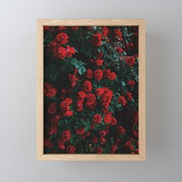 Beautiful Red Roses Framed Mini Art Print