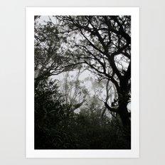 A Walk in the Clouds #2 Art Print