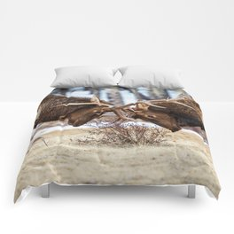 ELK IN RUT COLORADO ROCKY MOUNTAIN NATIONAL PARK WILDLIFE NATURE PHOTOGRAPHY Comforters