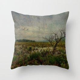 Heaven in Bashakill Wetlands Throw Pillow