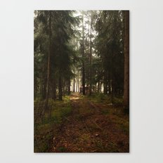 The Way Out Canvas Print