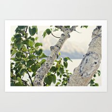 Under the Green Tree Art Print