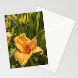 Orange Daylilies Stationery Cards