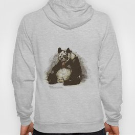 Pandamic Hoody