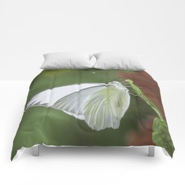 White Butterfly Comforters