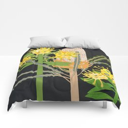 Acorn Banksia Comforters
