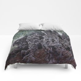 The Grandfather Comforters