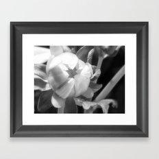 Begin Framed Art Print