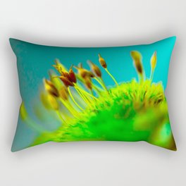whoville a tiny world of love Rectangular Pillow