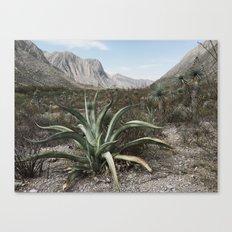 Mexico Century Canvas Print