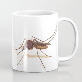 Mosquito by Lars Furtwaengler | Colored Pencil / Pastel Pencil | 2014 Coffee Mug