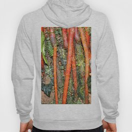 The Strong red ROOTS of The Sierra Palm in El Yunque rainforest PR Hoody