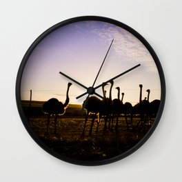 Ostriches at sunset Wall Clock