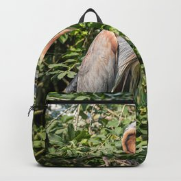 Purple heron resting on a branch in the green foliage of a tree Backpack