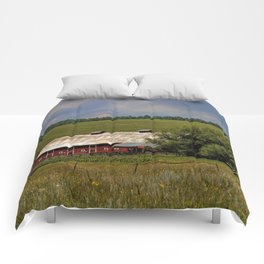Summer Days Comforters