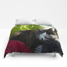 The Feline Queen Reposes (Gracie Queen of Chicago Collection) Comforters