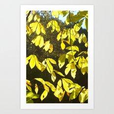Yellow for Banana but not Banana Leaves Art Print