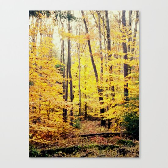 The Glow Canvas Print