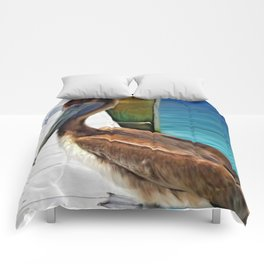 Dockside Pelican by Barbara Chichester Paintographer Comforters