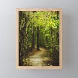 Louisiana Forest, Spanish Moss Framed Mini Art Print