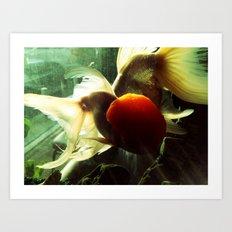 金鱼二 Art Print
