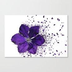 Purple flower Explosion Canvas Print