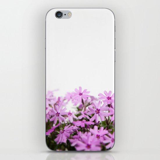 phlox {pink} iPhone & iPod Skin