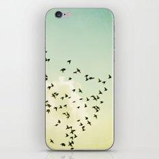 Birds Flying Photography, Birds Fly Sky, Mint Turquoise Yellow Nursery Art iPhone & iPod Skin