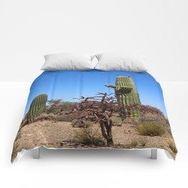 In The Desert Comforters