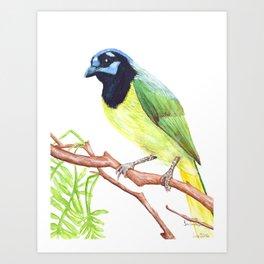 Chara Verde Art Print