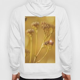 Autumn wildflowers in forest #decor #buyart #society6 Hoody