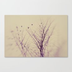 The Purity Of Spring Canvas Print