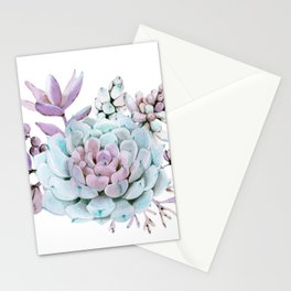 Turquoise and Violet Succulents Stationery Cards