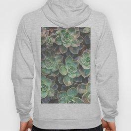 Succulents 2 Hoody