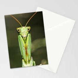 Garden Praying Mantis Stationery Cards