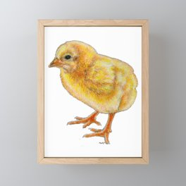 A chicken but not chicken Framed Mini Art Print
