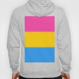 Pansexual Pride Flag Hoody