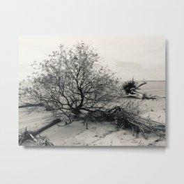 Erosion - Weathered Endless Beauty 7 Metal Print