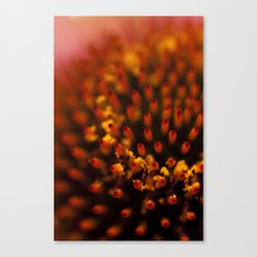Red Petals with Pollen Canvas Print