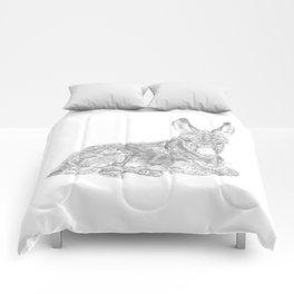 Baby Donkey Comforters