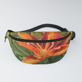 On Wild Chickory Blvd Fanny Pack