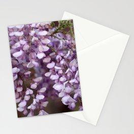Spring - Wisteria Stationery Cards