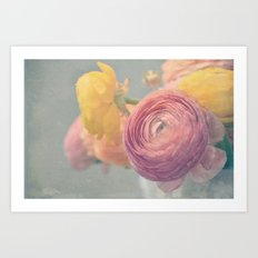 Stop and Smell the Ranunculus Art Print