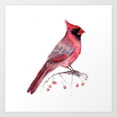 Red Cradinal Art Print