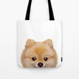 Pomeranian Dog illustration original painting print Tote Bag