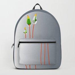 Calyptrae Backpack