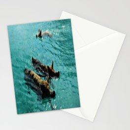 Swimming Pigs In The Exumas, Bahamas, Caribbean  Stationery Cards