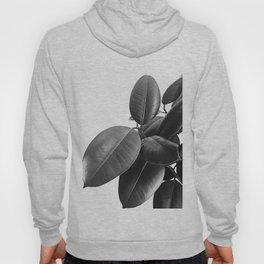 Ficus Elastica #23 #BlackAndWhite #foliage #decor #art #society6 Hoody